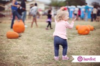 Pumpkin patch in the fall in Flower Mound